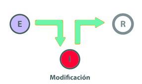 modificacion